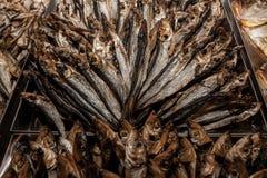 Mormora meravigliosamente presentata del pesce essiccato fotografia stock libera da diritti