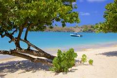 Morne Rouge-strand in Caraïbisch Grenada, royalty-vrije stock foto