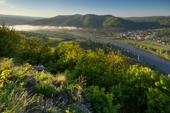Mornig on the Labe river Royalty Free Stock Image
