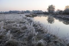 Frosty meadow and pond like a mirror royalty free stock images