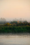 In the morning. Small village in the Danube Delta, Romania Royalty Free Stock Image
