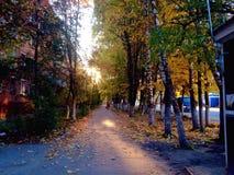 Morning alley. In autumn city Stock Photos