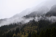 Morning in the Alps, Germany. A landscape with smoke, humidityin the forest royalty free stock images
