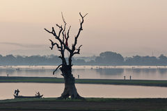 Morning in Amarapura, Myanmar Royalty Free Stock Image