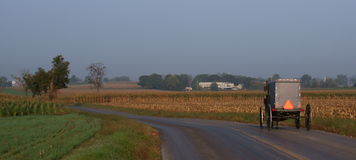 Morning Amish Buggy. An Amish Buggy rolls along in the early morning on a country road in Lancaster County, Pennsylvania Royalty Free Stock Photos