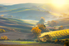 Morning Autumn landscape -  fall season and sunshine Royalty Free Stock Image