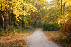 Morning autumn landscape with footpath Royalty Free Stock Image