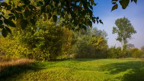 Morning autumn landscape on a meadow in the countryside. Amazing beautiful landscape. Ukraine. Europe stock photography