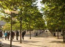 Morning autumn walk at Stockholm Stock Photography
