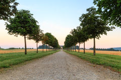 Morning Avenue. Shot of an Avenue at Chateau Seehof before sunrise in Bavaria, Germany Stock Photography
