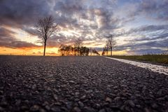 Morning awakening a an asphalt street royalty free stock image