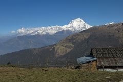 Morning in Baely, view of Dhaulagiri. Stock Photo