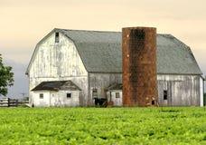 Morning Barn Stock Photo
