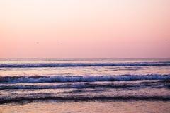 Morning at beach Stock Image