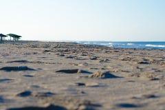 Morning beach waves. Sunrise sand royalty free stock photography