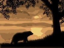 Morning Bear. Illustration of my original computer art royalty free illustration