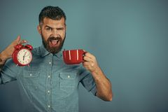 Morning begins with coffee. hipster with milk cup, time, copy space royalty free stock photos