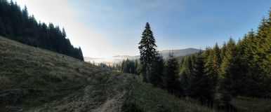 Morning in Bihor carst mountains in Apuseni in Romania Royalty Free Stock Photography