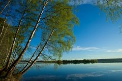 Morning blue sky, on the shore of green trees illuminated by the. Dawn over the quiet water surface of the lake. Morning blue sky, on the shore of green trees Stock Photo