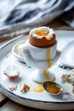 Morning boiled eggs with toasts near the window with bright light stock photos