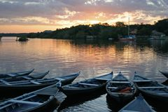 Morning brazil. Canoes in line during the dawn in Rio Tapajos - Brazil Royalty Free Stock Photo