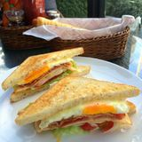 Morning breakfast , BLT (bacon,tomato ,lettuce) toasted sandwich. Closeup of bacon tomato lettuce toasted sandwich with blur boken food dish and food seasoning Royalty Free Stock Photography
