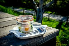 Morning Breakfast on a Sunny Day Stock Photography