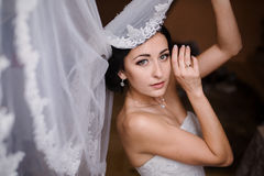 Morning bride Stock Images
