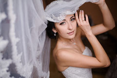 Morning bride Royalty Free Stock Images