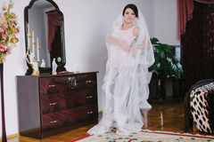 Morning bride Stock Photography