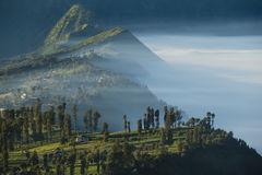 Morning in Bromo Stock Image