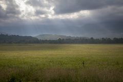 Morning in Cades Cove, Great Smoky Mountains National Park stock photos