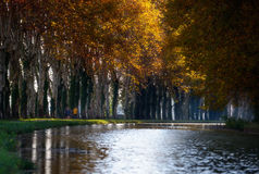Morning canal two Royalty Free Stock Photo