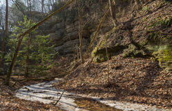 Morning in the Canyon. Morning in St. Louis Canyon in Starved Rock, Illinois in late February Stock Image