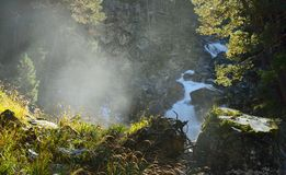 Morning in canyon Stock Photography