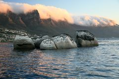 Evening in Cape Town stock photography