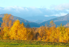 Morning Carpathian mountain autumn landscape. Stock Photography