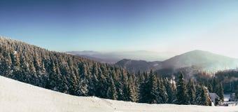 Morning in Carpathian mountains. Dragobrat. Sunrise in mountains Stock Image