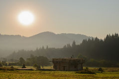 Morning in the Carpathians Royalty Free Stock Photo