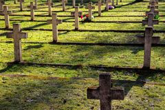 Morning cementery, Poland royalty free stock image