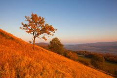 Morning in Central Bohemian Uplands, Czech Republic. View from the hill at sunrise. Nature monument royalty free stock photo