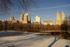 Morning in the Central Park. The Central Park in the morning is very quit and peaceful place Royalty Free Stock Photography