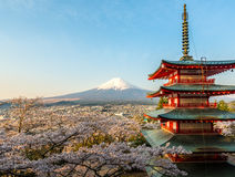 Morning of Chureito Pagoda and Mt. Fuji with blooming sakura Stock Photos