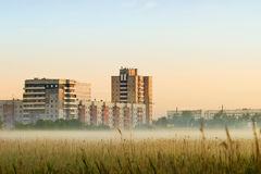 Morning city. Morning fog in the city Stock Photography