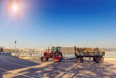 Morning in the city park. cleaning, pruning, tractor-trailer carrying wood royalty free stock photography