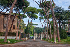 Morning in the city park. Parco Del Colle Oppio, Roma, Italy Royalty Free Stock Images