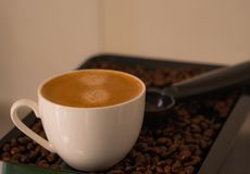 Morning, Close-up shots of coffee cup nice espresso put on coffee beans fragrant aroma. stock photos