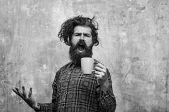 Morning coffe. singing bearded man pulling stylish fringe hair with blue cup. Morning coffe. singing bearded man, caucasian hipster, with long beard and stock photography