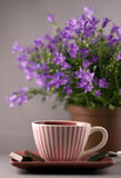Morning coffee Royalty Free Stock Photography