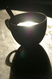 Morning coffee. Cup with sun reflection Royalty Free Stock Images